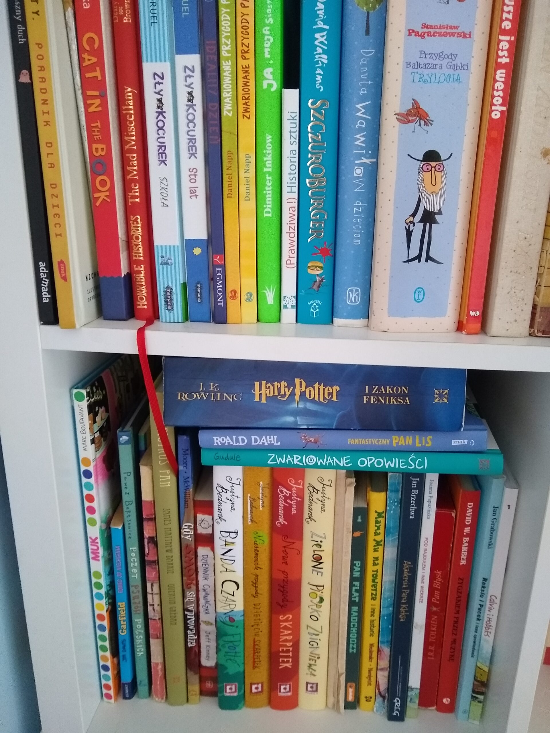 zdjęcia domowych biblioteczek